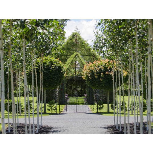 """ΟΡΘΟΔΟΞΙΑ INFO Ι Νέα Ζηλανδία: Έφτιαξε εκκλησία από """"ζωντανά"""" δέντρα!"""